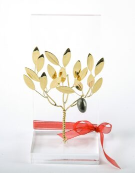 Handmade bronze gift business card case with olivetree in plexiglass.
