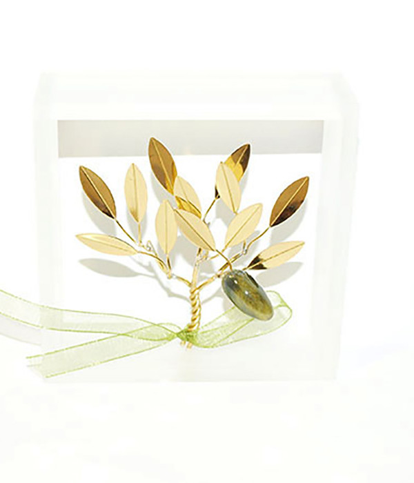 Brass handmade family olive tree in plexiglass frame