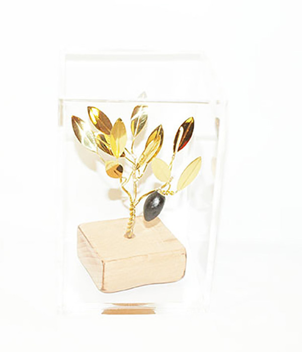 Brass handmade family olive tree in plexiglass
